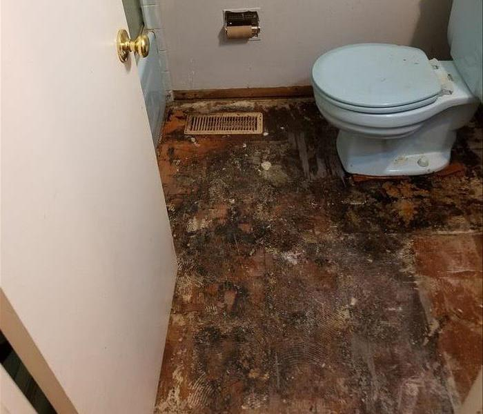 Water damage untreated