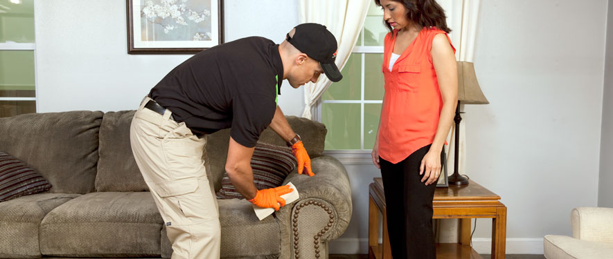 Accokeek, MD carpet upholstery cleaning